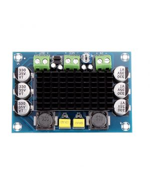 XH-M542 TPA3116D2 Mono 100W Digital Audio Amplifier Module 12-26V DC